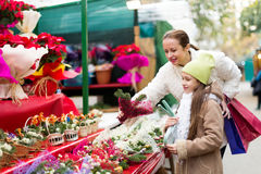 Mother and daughter choose mistletoe Royalty Free Stock Photography