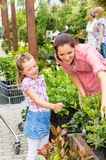 Mother daughter choosing flowers in garden shop Royalty Free Stock Photography