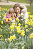 Mother And Daughter In Daffodils Royalty Free Stock Image
