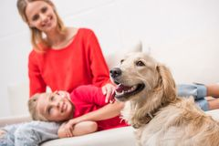 Mother and daughter with dog. Happy mother and daughter with golden retriever dog sitting on sofa at home Royalty Free Stock Photo