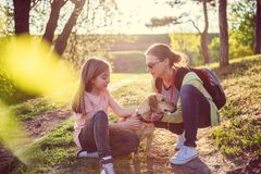 Mother and daughter with a dog Stock Image