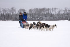 Mother and daughter dog sledding