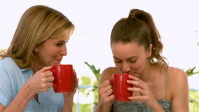 Mother and daughter drinking and talking stock video footage