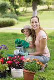 Mother and daughter engaged in gardening Stock Images