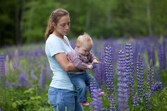 Mother & Daughter in Field of Lupine Flowers Stock Photo