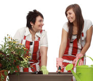 Mother and daughter gardening Royalty Free Stock Photo