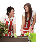 Mother and daughter gardening Stock Photography