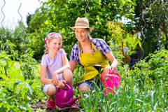 Mother and daughter gardening Stock Image