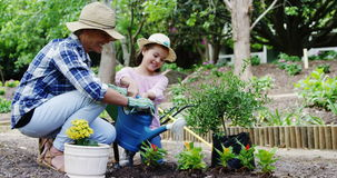 Mother and daughter gardening. In park stock footage