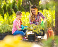 Mother and daughter  gardening together Royalty Free Stock Photo