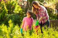 Mother and daughter  gardening together Stock Photography