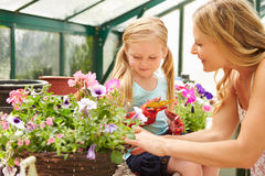 Mother And Daughter Growing Plants In Greenhouse Stock Image