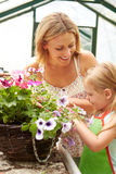 Mother And Daughter Growing Plants In Greenhouse Royalty Free Stock Photos