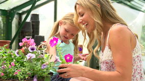 Mother And Daughter Growing Plants In Greenhouse stock video