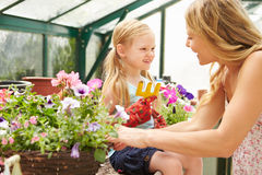 Mother And Daughter Growing Plants In Greenhouse Stock Photography