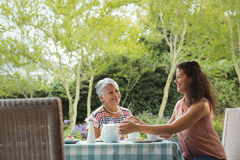 Mother and daughter having tea Royalty Free Stock Photography