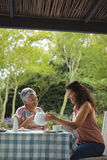 Mother and daughter having tea Royalty Free Stock Image