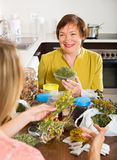 Mother and daughter with herbal tea Stock Image