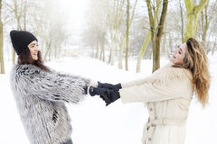 Mother and daughter holding hands in the snow stock photo