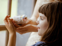 Mother and daughter holding little  pigeon. Consept of innocence Stock Photo
