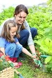 Mother and daughter at home garden royalty free stock images