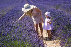 Mother with daughter in lavender field Royalty Free Stock Image
