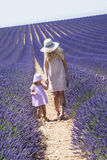Mother with daughter in lavender field Stock Images