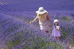 Mother with daughter in lavender field Stock Photos