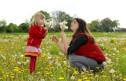 Mother and daughter on a meadow Stock Photos