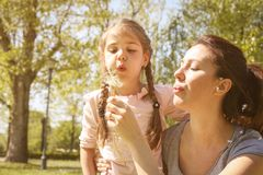 Mother and daughter in the meadow. stock photography