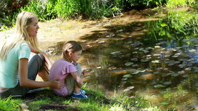 Mother and daughter nourishing a duck. In a park stock footage