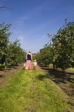 Mother and daughter in Orchard Royalty Free Stock Photography