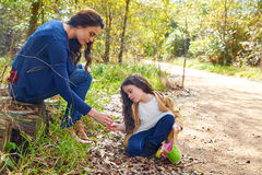 Mother daughter in a park picking clover plants Stock Photography