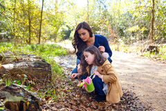 Mother daughter in a park picking clover plants Royalty Free Stock Photo