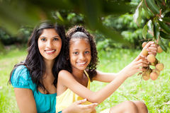 Mother and daughter picking litchis Royalty Free Stock Photo