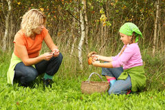 Mother and daughter picking mushrooms Royalty Free Stock Image