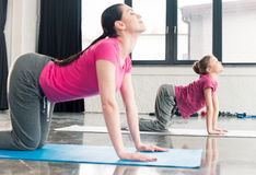 Mother and daughter in pink shirts practicing yoga in Cat pose. In gym Stock Image