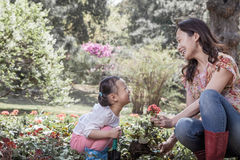 Mother and daughter planting flowers. Royalty Free Stock Images