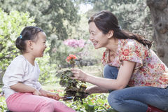 Mother and daughter planting flowers. Royalty Free Stock Photography