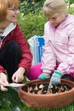 Mother and daughter planting tulips. Family time outside in the garden by planting spring bulbs into container during autumn Stock Image