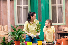Mother and daughter with plants and flowerpots standing at table Royalty Free Stock Images