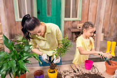 Mother and daughter with plants and flowerpots standing at table Stock Images