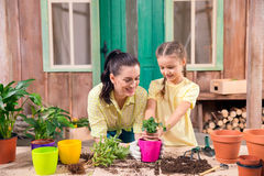 Mother and daughter with plants and flowerpots standing at table Stock Photo