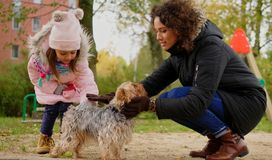 Mother and daughter playing with dog on playground.  Stock Photo