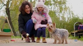 Mother and daughter playing with dog on playground.  stock footage