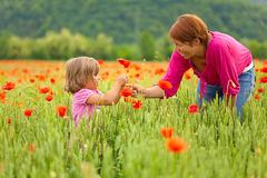 Mother and daughter in poppy field Royalty Free Stock Images