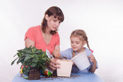 Mother and daughter pour small pot of earth in large Royalty Free Stock Images