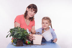 Mother and daughter pour small pot of earth in large Royalty Free Stock Image