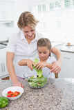 Mother and daughter preparing salad Stock Photography