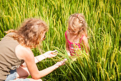 Mother and daughter on the rice paddies Stock Image
